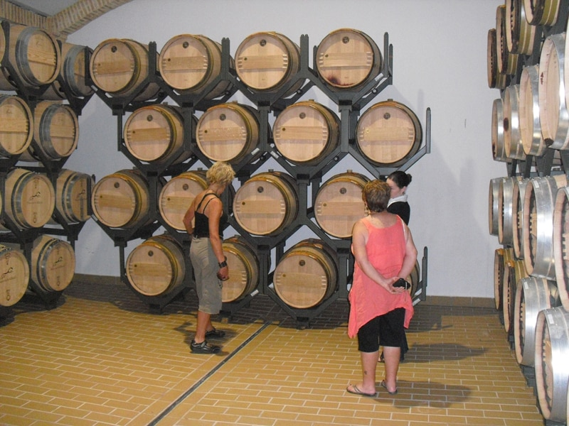 A group visiting the barrel room at a winery near Arcos de la Frontera on our wine tour