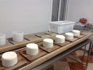 Fresh cheese with the moulds removed