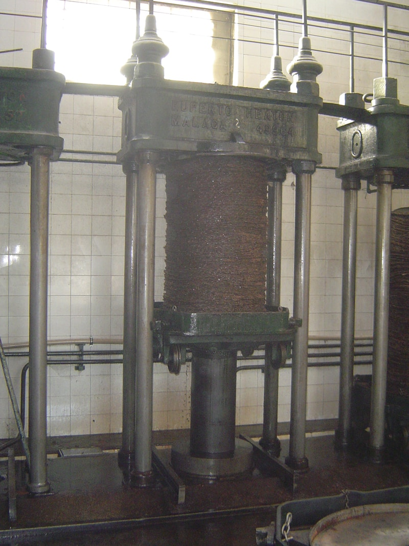 Olive oil being extracted using a hydraulic press