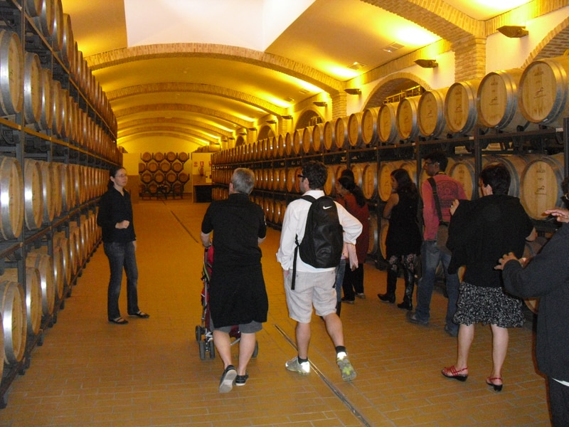 Group visiting the barrel room at a winery near Arcos de la Frontera on our wine tour