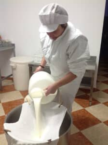 Cheese being poured through cheesecloth prior to being turned into cheese