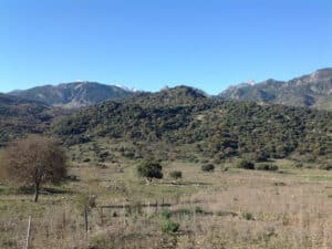 A view of the mountains of Grazalema