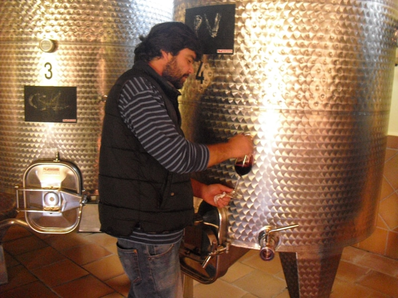 A sample of wine being taken from a vat