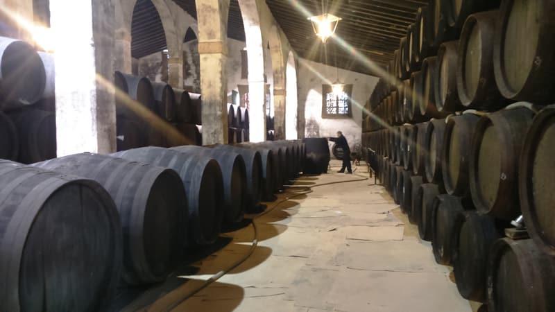 Large winery building in Jerez de la Frontera